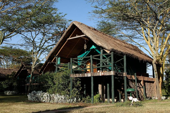 2 Days 1 night Olpajeta Conservancy - Ngare Ndare Forest photo 3