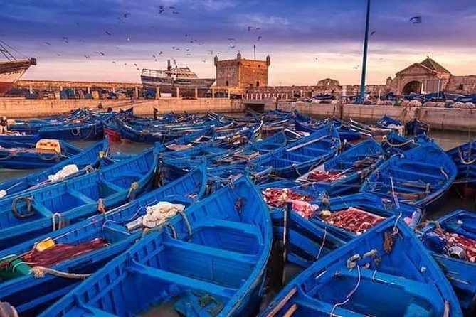 Essaouira 1 Day Tour From Marrakech