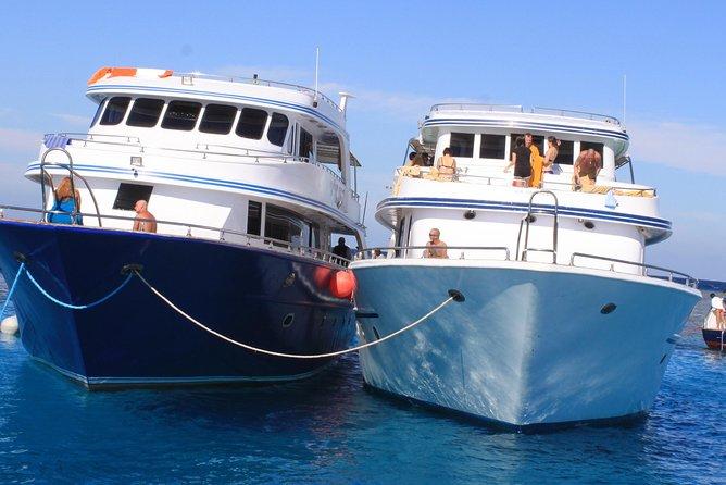Ras Muhammed & White Island Snorkeling Boat Trip - Sharm El Sheikh