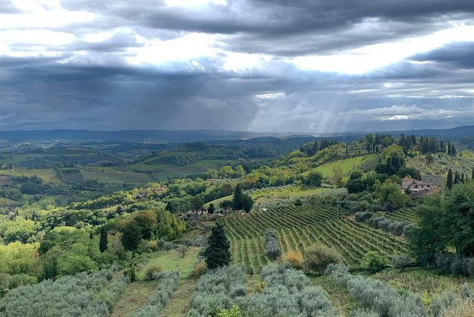 Private Tour: Siena, San Gimignano and Chianti Day Trip from Florence photo 18