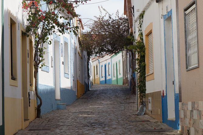 Algarve Landscapes & Winery