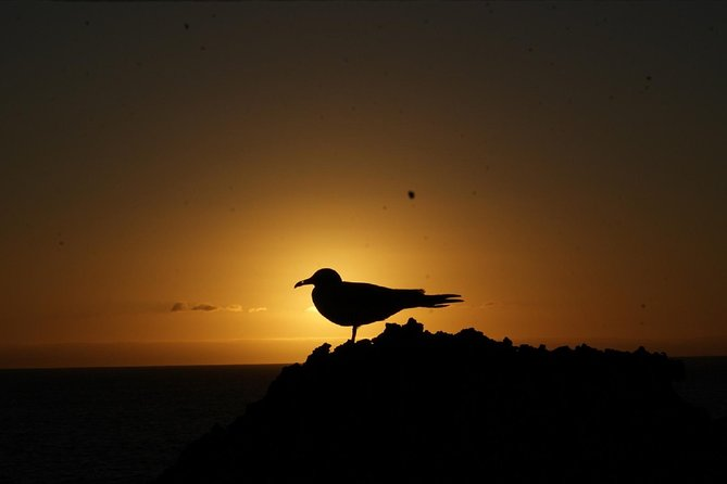 5-Day Tour Galapagos Multisport