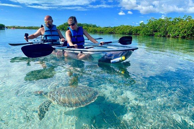 Clear Kayak Eco Tour