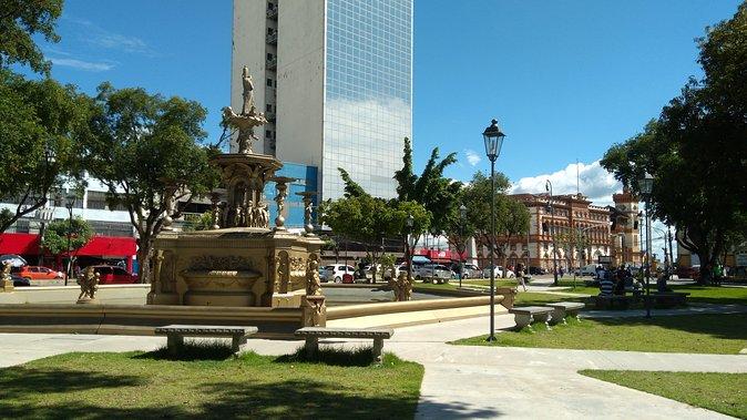 Historical Manaus Walking Tour