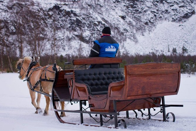 Sleigh ride in the arctic Country side