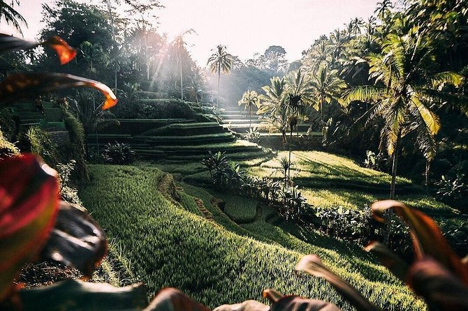 Bali Customized Tour With Local Guide