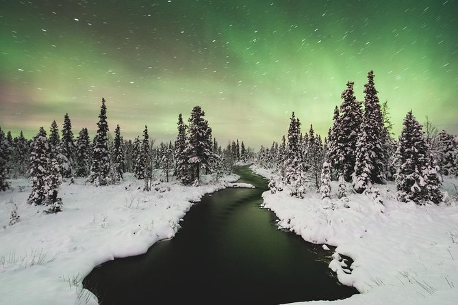 Northern Lights Tour Swedish Lapland