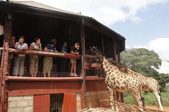 Full day tour including National park,shedrick,giraffe center and bomas of Kenya photo 3