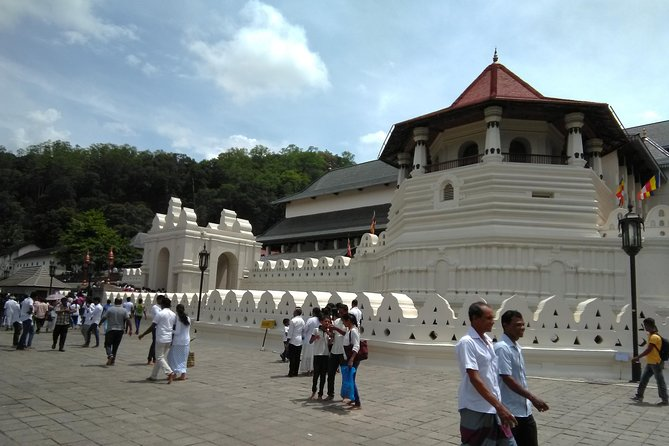 All inclusive Private Day trip Kandy and other attractions