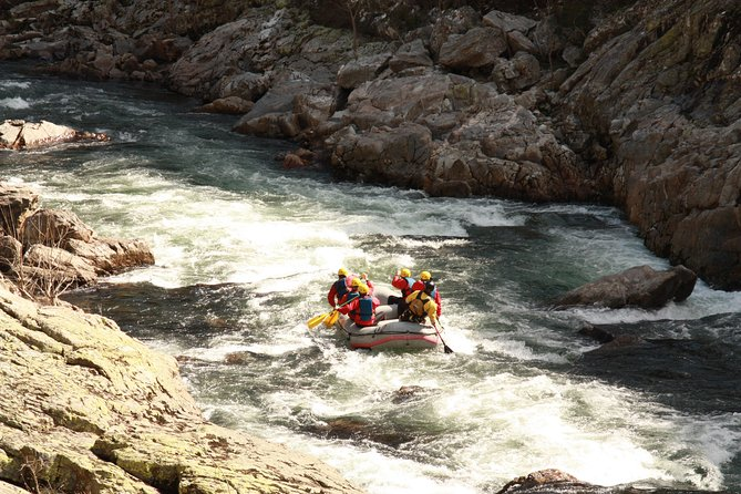 Rafting (by local guides) photo 9