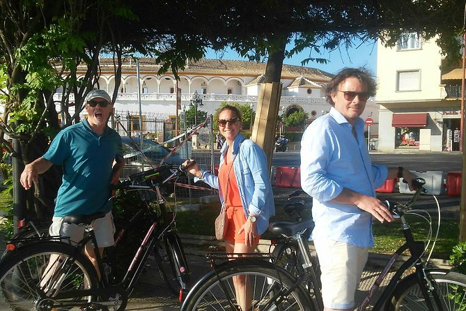 Sevilla Monumental Bike Tour with a local guide