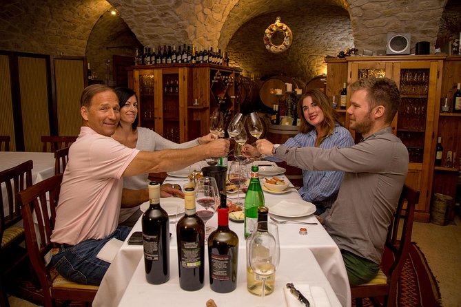 Valpolicella Wine Tour: 3 Wineries, refined lunch & unique Amarone tastings