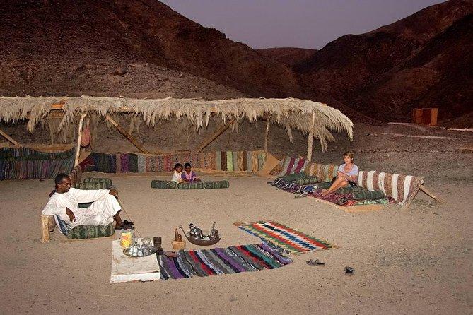 Wadi El Gemal Excursions In Marsa Alam