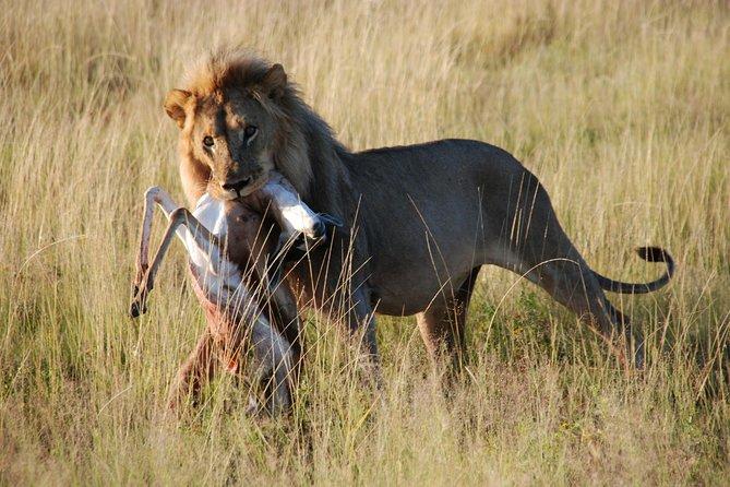 Taste of Namibia Safari - 8 Days