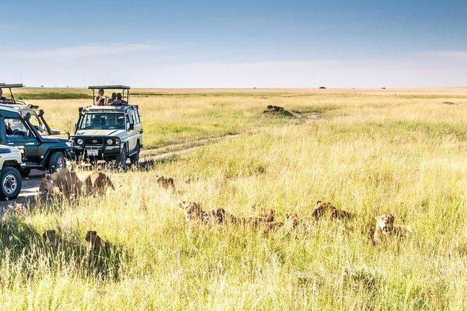 2 Days Private Trip To Manyara And Ngorongoro