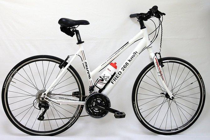 Rental bicycles