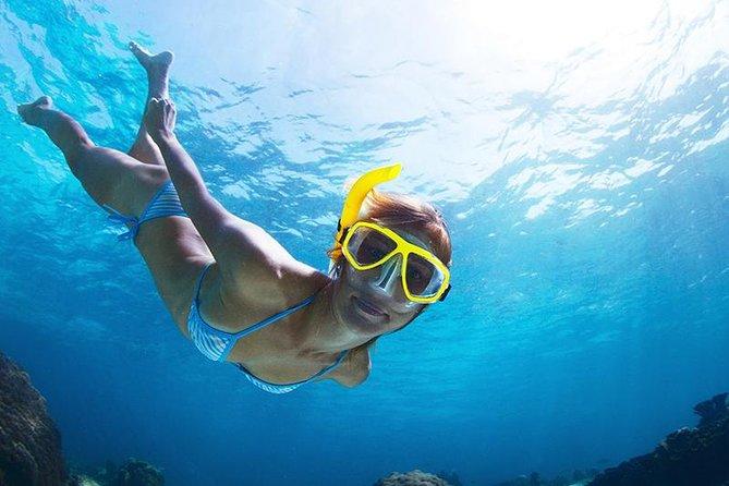 Snorkel Tour - San Jose del Cabo