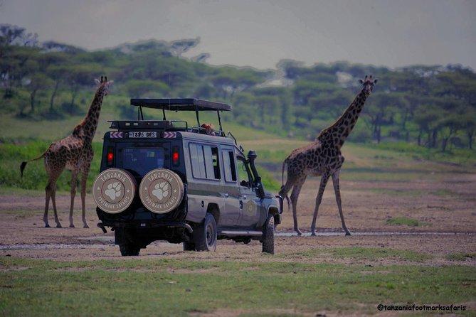 8 Days Tanzania Magical safari