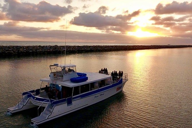 Luxury Catamaran Sunset and Wine Cruise from Dana Point