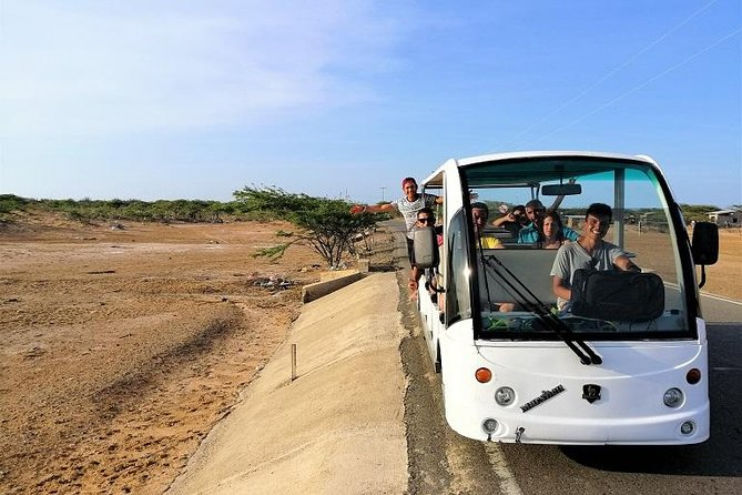 Eco City Tour Riohacha - Electric Bus + Tropical Juice and more ...