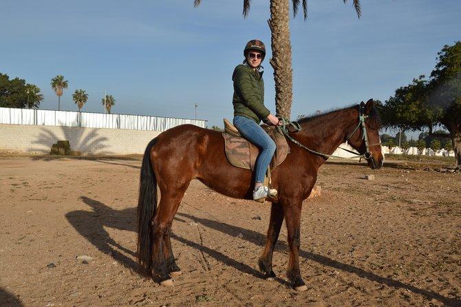 Agadir horse riding with Hotel Transfers