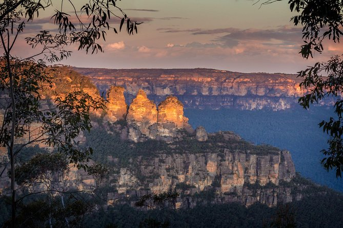 Private Blue Mountains & Kangaroo / Koala Experience