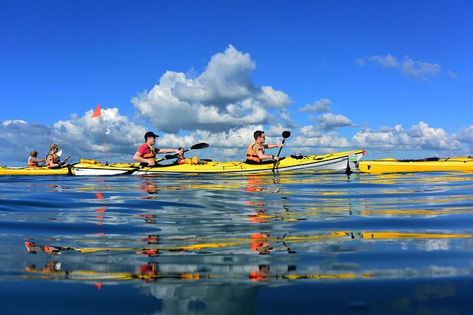 Auckland Rangitoto Island Guided Daytime Kayaking Tour photo 6
