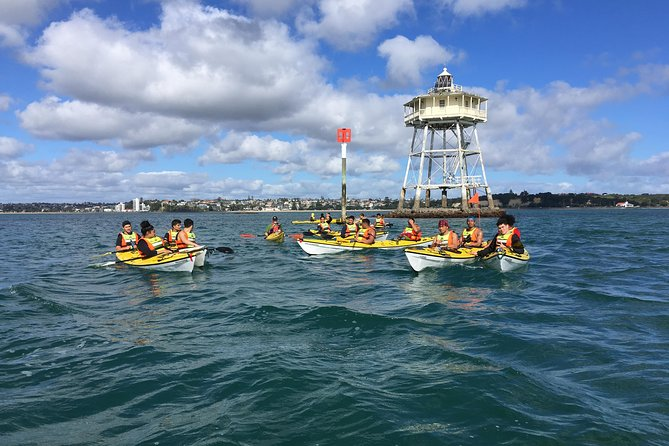 Auckland Rangitoto Island Guided Daytime Kayaking Tour photo 7