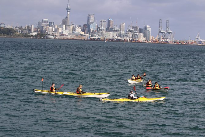 Auckland Rangitoto Island Guided Daytime Kayaking Tour photo 12