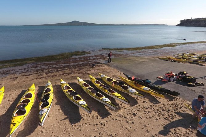 Auckland Rangitoto Island Guided Daytime Kayaking Tour photo 3