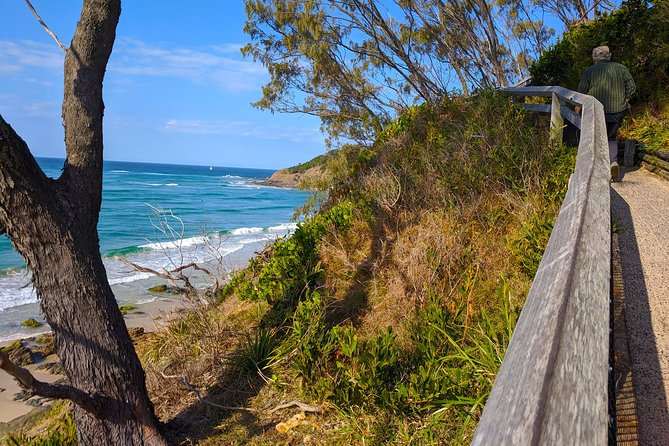 Byron Bay, Bangalow and Gold Coast Day Tour from Brisbane photo 4