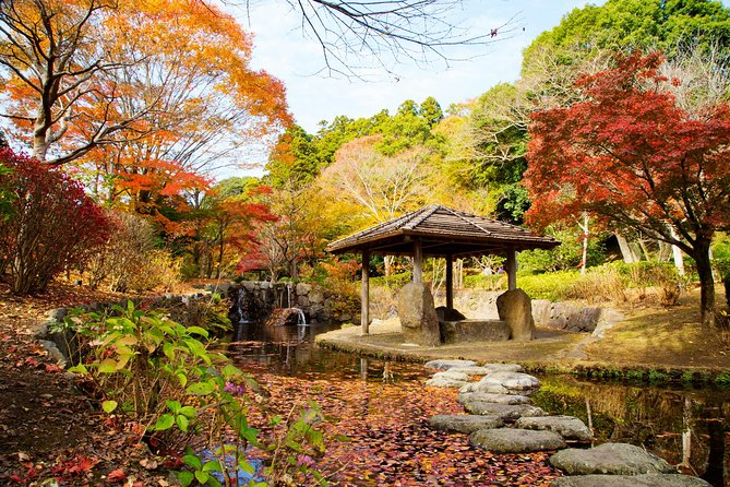 Mito, Kairakuen 1day Autumn leaves Private Tour From Tokyo with Chartered Car photo 1