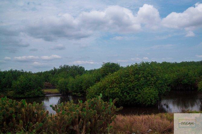 Southern Volta - 2 Day Trip