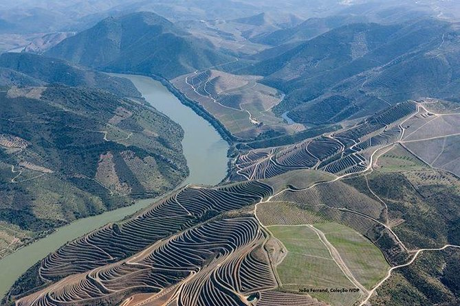 My Douro - Full Day, Wine Tasting, River Cruise and Lunch from Peso da Regua