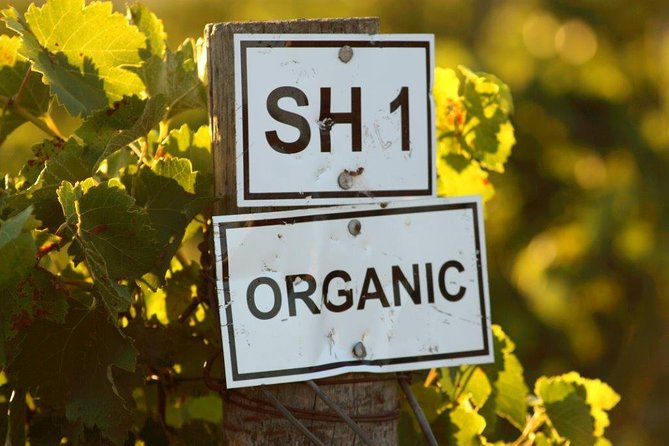 Organic & Biodynamic: A Sustainable Wine Experience photo 2
