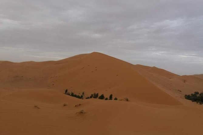 4 Days / 3 Nights Sahara Desert From Fez To Marrakech photo 63