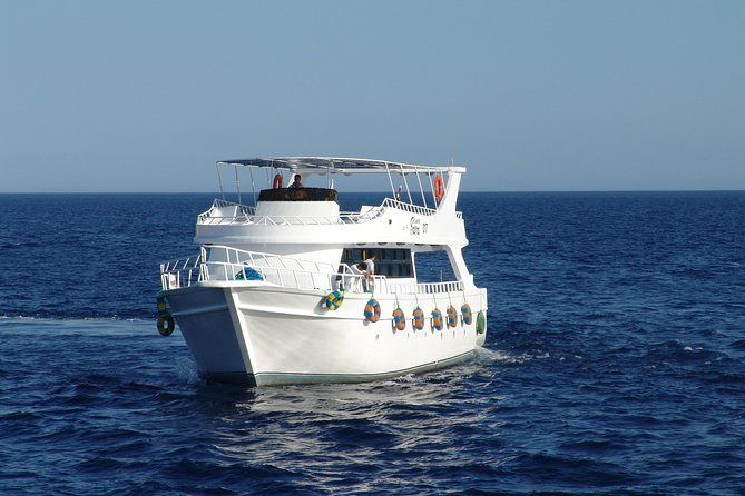 Red Sea Snorkel Experience photo 2