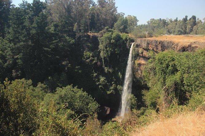 Rehuen Falls