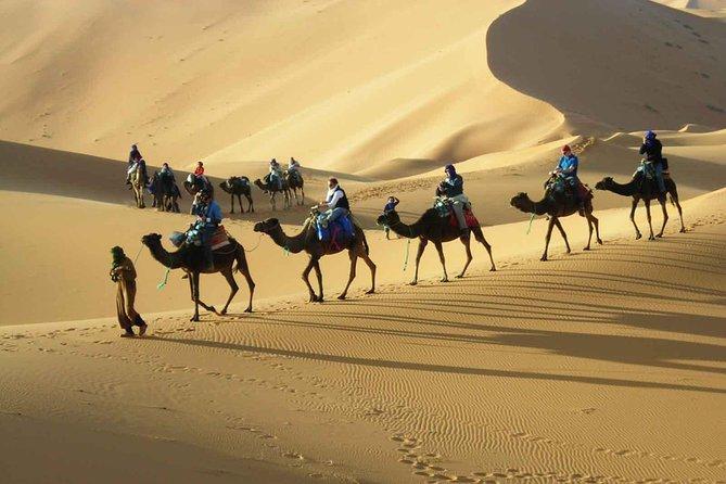 3 Days Desert Tour From Marrakech To Merzouga