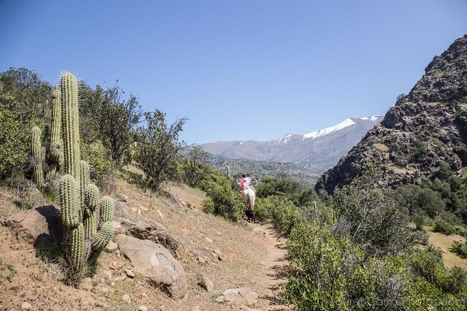 Horseback Riding in the Andes - Authentic Chilean cowboys - See the real Chile!