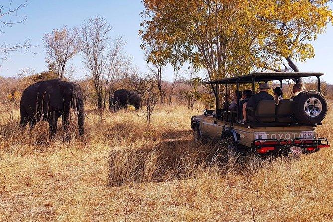 Full Day Hwange Safari