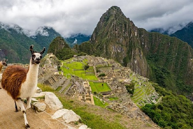 Machu Picchu Ticket: Official Entrance Ticket