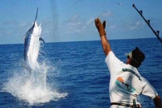 Punta Cana Deep sea fishing, catch a great adventure! photo 6