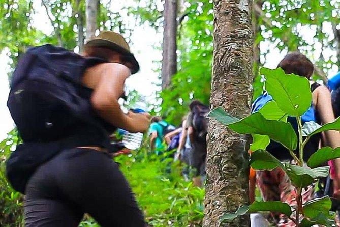 3D2N Mae Wang Jungle Trekking Adventure from Chiang Mai