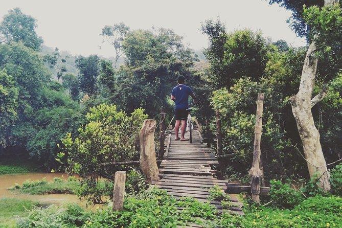 Perky Trail