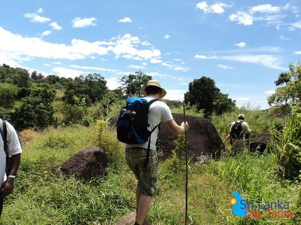 The birdwatchers quest through Hanthana Mountain Range – Kandy