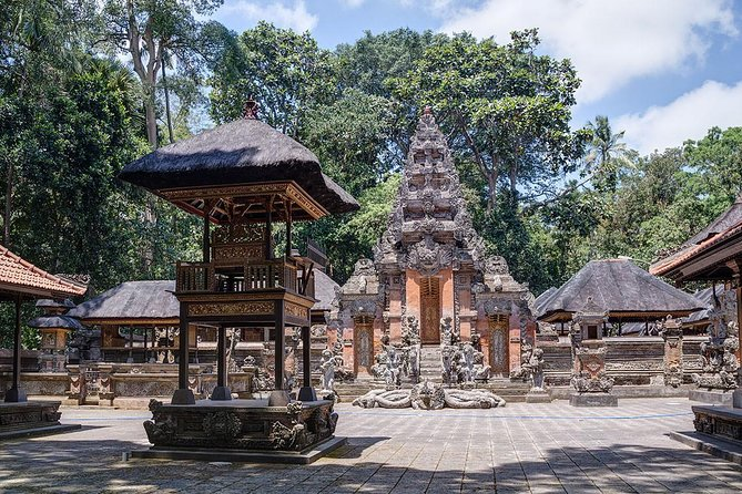 Bali Half Day Car Charter - Ubud Village Tour