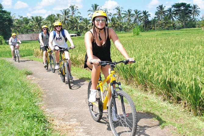 Private Lombok Cycling Tour : Rice Field, Plantations to Kerta Gangga Waterfall
