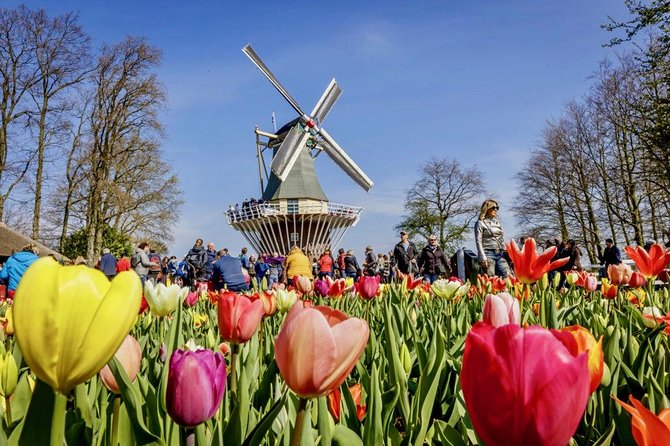 Rotterdam & Keukenhof - Corona-proof Small Public Group Tour from Amsterdam