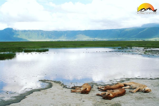 Ngorongoro Adventure Day Trip photo 6